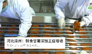 视频|滦州:鲜食甘薯深加工促增收