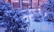 暴雪预警!